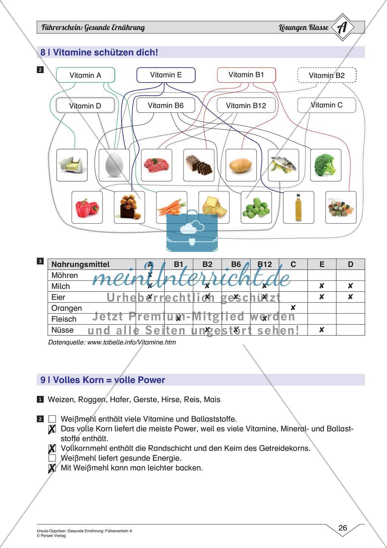Gesunde Ernährung Einfaches Niveau   meinUnterricht