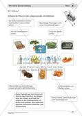 Gesunde Ernährung: Mittleres Niveau Preview 24