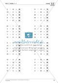 Lernfortschrittsdiagnose: Einmaleins Preview 20
