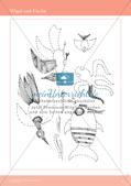 Künstlerische Miniprojekte: Vögel und Fische Preview 5