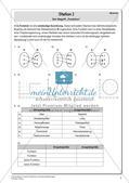 Lineare Funktionen und lineare Gleichungen Preview 9