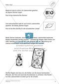 Umweltbewusstes Handeln: Ernährung Preview 8