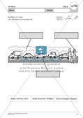 Umweltbewusstes Handeln: Straßenverkehr Preview 19