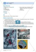 Kunsttechniken: Aquarelltechnik Preview 6