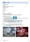 Kunsttechniken: Collage Preview 7
