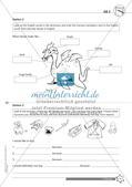 Sprachkompetenz im Anfangsunterricht Preview 18