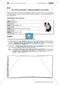 Lernzirkel: Erfassen von Texten Preview 15