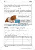Lernzirkel: Erfassen von Texten Preview 19