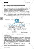 Der Knaller-Test - ein grundlegendes (Gedanken-) Experiment der Quantenphysik Preview 10