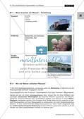 Die physikalischen Eigenschaften des Wassers Preview 11