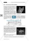 Wie funktioniert ein Katzenauge? - Prinzip und technische Anwendung eines Retro-Reflektors Preview 8