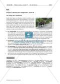 Inmigración ilegal: causas y efectos Preview 2