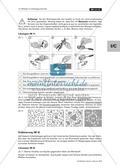 Metalle im Anfangsunterricht: Erläuterungen und Lösungen Preview 7