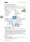 Herstellung pflanzlicher Indikatoren Preview 8