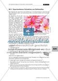 Projektorientiertes Arbeiten - Duft- und Aromastoffe Preview 15