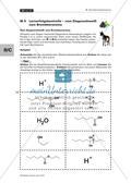 Der Estermechanismus: Einstieg in die Struktur-Eigenschaftsbeziehungen Preview 22