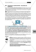 Stoffklasse der Heterocyclen: Furan in Lebensmitteln Preview 17