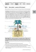 Der Lebensraum Wüste: Bilinguales Material Preview 7