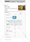 Vorbereitung auf Sprachprüfungen: Urlaubspläne Preview 12