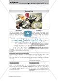 Discuter d'un sujet - Bildimpulse zur Sprachprüfung Preview 5