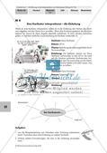Interpretation von Karikaturen: Einleitung, Hauptteil, Schluss Preview 1