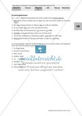 Satzreihen und Satzgefüge Preview 6