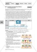 Der Ordensstaat: Einstieg und chronologischer Überblick Preview 6
