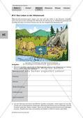 Altsteinzeit und Jungsteinzeit – ein Vergleich Preview 2
