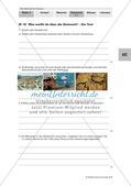 Steinzeit: Lernerfolgskontrolle Preview 1