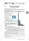 Taschengeld - Stabdiagramm und prozentuale Umrechnung Preview 1