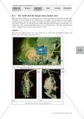 Entwicklung der Seidenspinner Preview 11