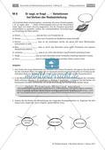Protokoll: Indirekte Rede und Zeichensetzung Preview 5