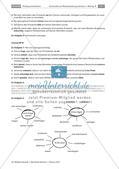 Protokoll: Indirekte Rede und Zeichensetzung Preview 8