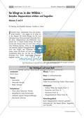 Vertonung einer Landschaft: Borodins Steppenskizze Preview 1