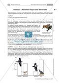 Strategien der Beutetiere und Jäger Preview 5