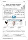 Der Hund: Sinnesleistungen und Verhalten Preview 10