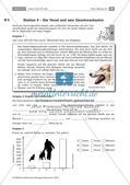 Der Hund: Sinnesleistungen und Verhalten Preview 12