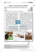 Der Hund: Sinnesleistungen und Verhalten Preview 13