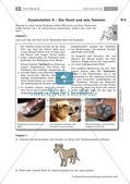 Der Hund: Sinnesleistungen und Verhalten Preview 15
