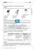 Der Hund: Sinnesleistungen und Verhalten Preview 20