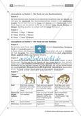 Der Hund: Sinnesleistungen und Verhalten Preview 21