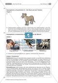 Der Hund: Sinnesleistungen und Verhalten Preview 22