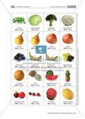 Lernspiel: unsere Ernährung Preview 13