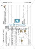 Insekten: Körperbau, Sinnesorgane, Flugtechnik, Atmung, Blutkreislauf und Nervensystem Preview 4
