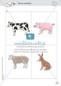 Spielideen: Flashcards zum Thema Wild and Farm animals Preview 12