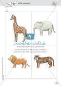 Spielideen: Flashcards zum Thema Wild and Farm animals Preview 16