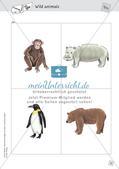 Spielideen: Flashcards zum Thema Wild and Farm animals Preview 17