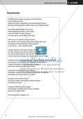 Verfassen von Texten: Protokoll, Plakat, Laternengedicht und Fantasiegeschichte Preview 19
