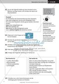 Verfassen von Texten: Protokoll, Plakat, Laternengedicht und Fantasiegeschichte Preview 5
