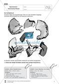 Vorzeit und Antike: Forscher bei der Arbeit Preview 6
